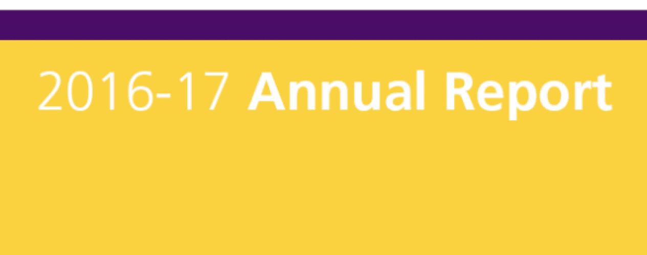 2016-2017 annual report cover