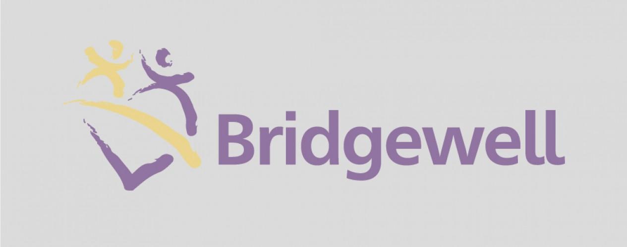 bridgewell logo placeholder image